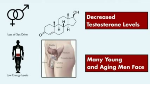 Ageless-Male-Review-Does-This-Natural-Free-Testosterone-Booster-Really-Work-review-results-reviews-enhancement-pills-softgels-results-becoming-alpha-male
