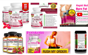 Forskolin-Review-Does-Forskolin-Really-Work-Are-There-Evidences-Find-Out-Here-Weight-Loss-Pills-Reviews-Results-Becoming-Alpha-Male